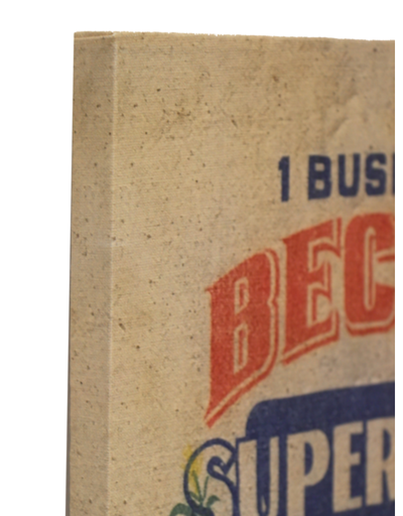 Seed Bag Reproduction Canvas