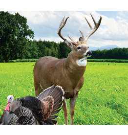 Frozen Forage - Deer Plot Seed (5 lb bag)