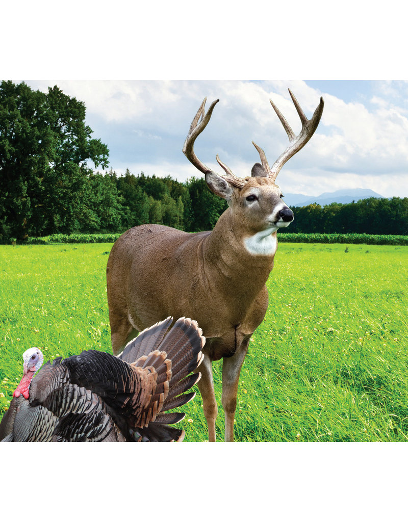 Midwestern TNT (Tine & Turkey) - Deer Plot Seed (6 lb bag)