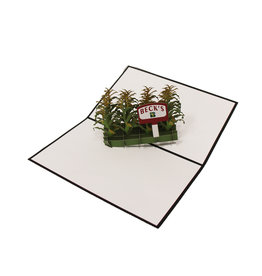 halo Pop-Up Corn Field Card