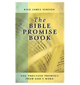 Bible Promise Book