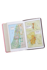 Giant Print Standard Bible Pink/Brown Leathersoft