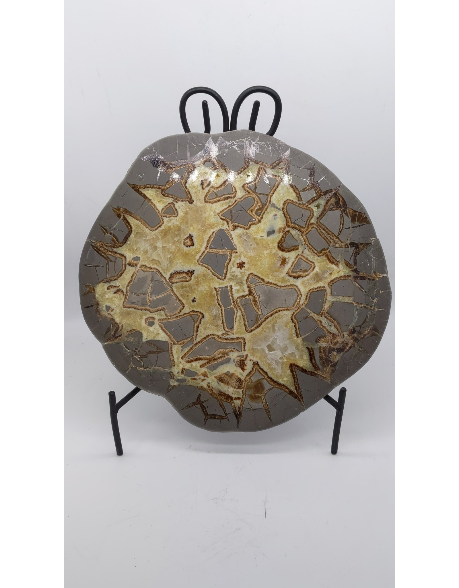 Septarian Slice with Polished Face (Southwest Utah) Limestone, Aragonite and Calcite