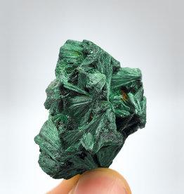 Fibrous Malachite (DR Congo)