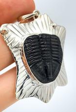 Trilobite Pendant