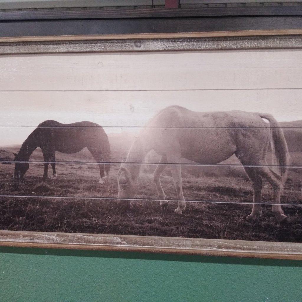 GANZ 164508 WALL ART HORSE FRAMED
