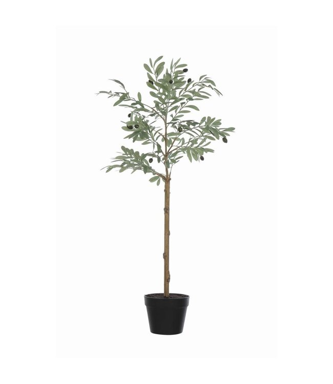 CREATIVE CO-OP FAUX OLIVE TREE IN POT