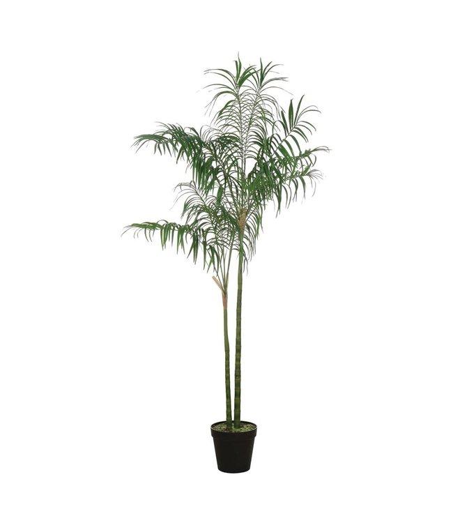 CREATIVE CO-OP FAUX PALM TREE IN POT