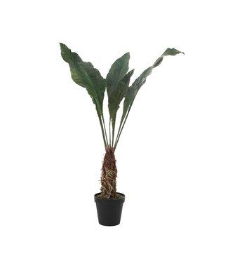 CREATIVE CO-OP FAUX TROPICAL PLANT IN POT