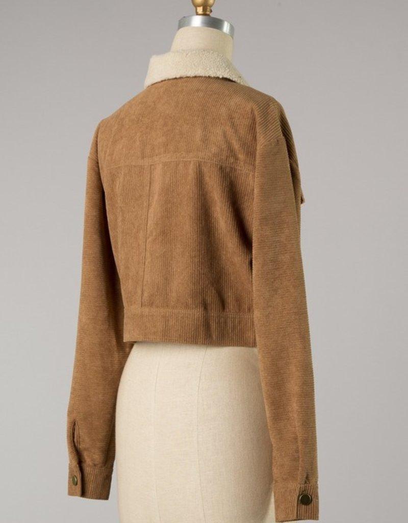 Bow N Arrow Beige Cropped Corduroy Jacket