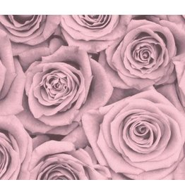 Blush Blossoms Placemat Set of 30