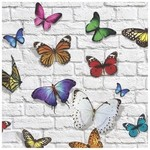 Flutter Placemat Set of 30