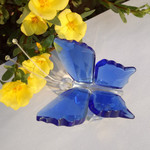 A Crystal Butterfly Blue