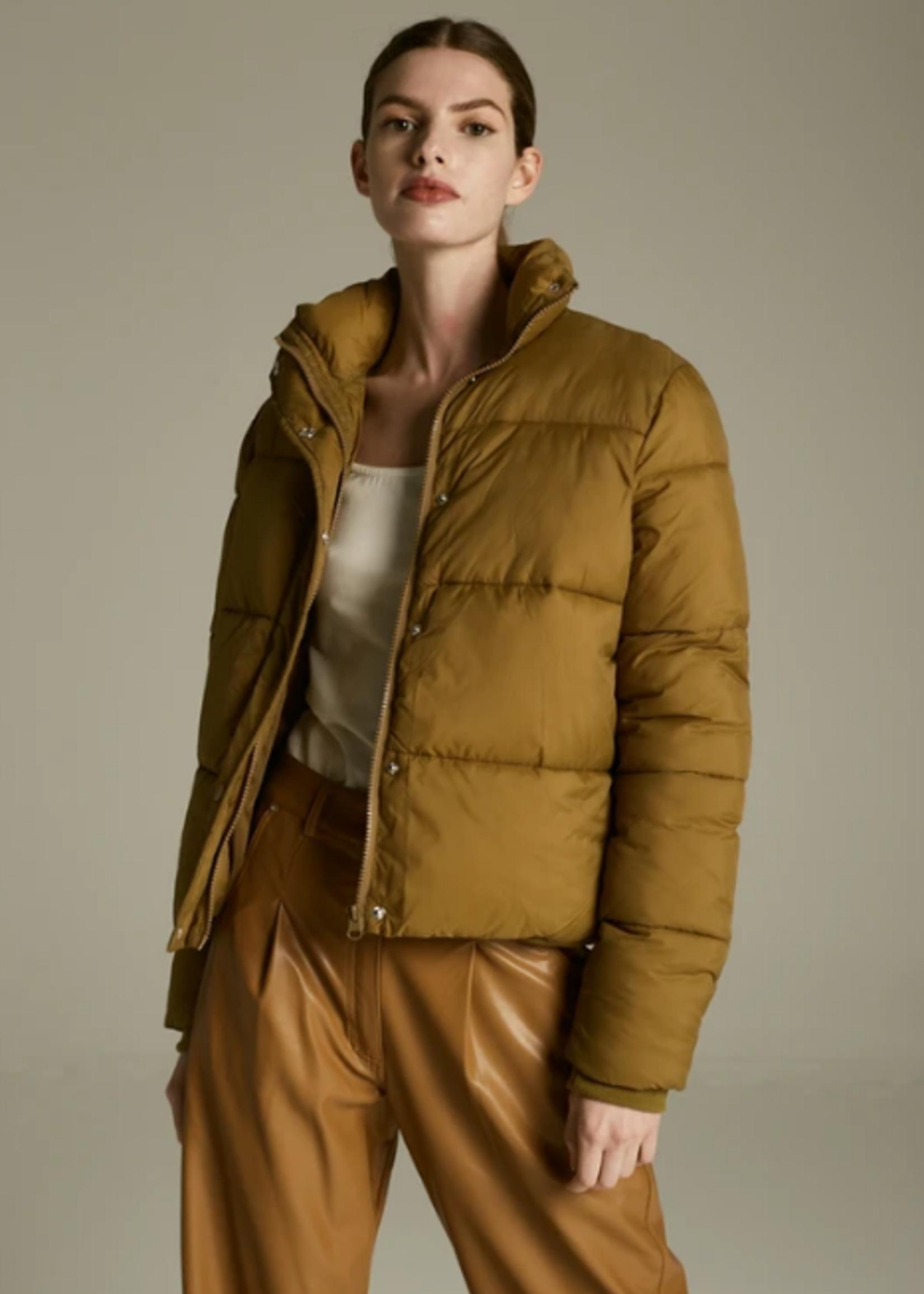 Deluc Aliyah Jacket - Olive