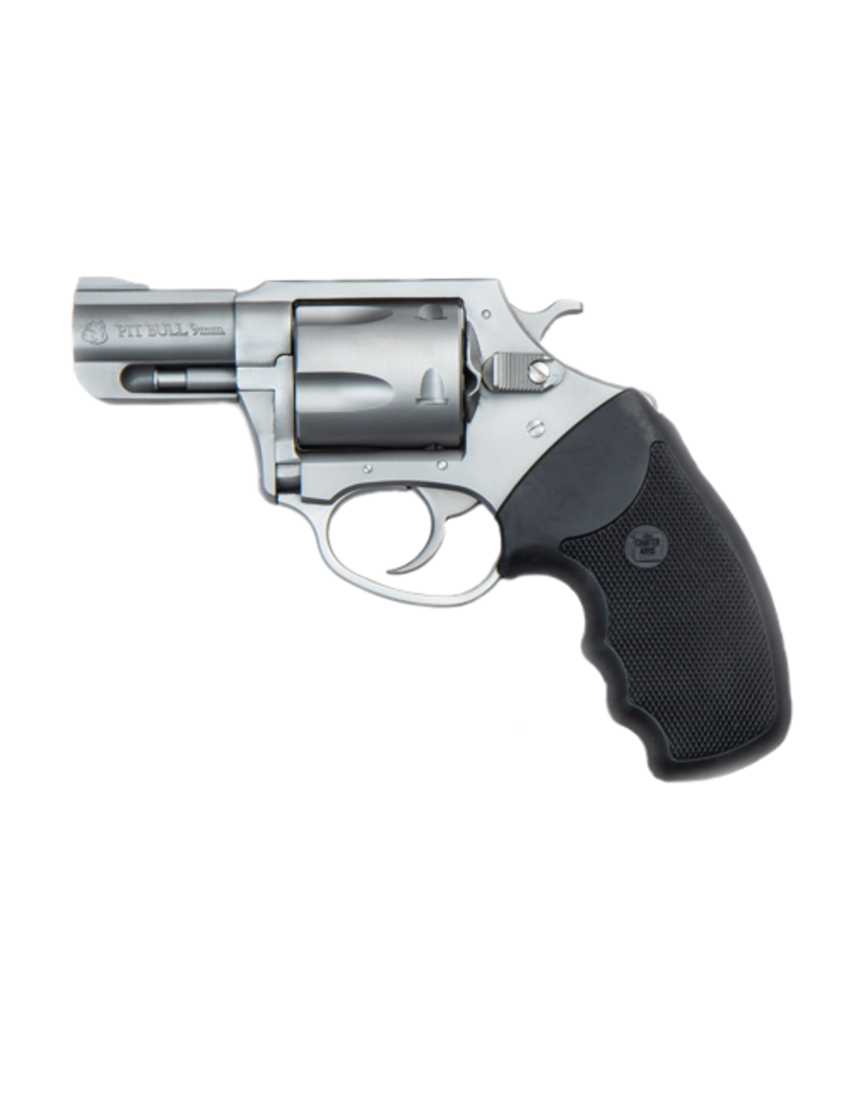 """Charter Arms CHARTER ARMS PITBULL, #79920, 9MM, 2"""", STAINLESS, 6 SHOT"""