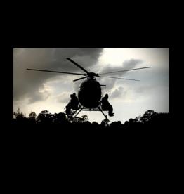 OPERATIONAL DEFENSE INSTITUE AERIAL HOG HUNT - ODI