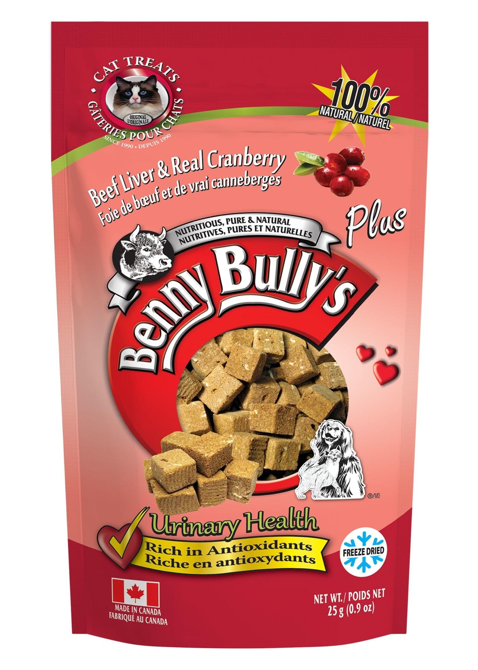 Benny Bully Cranberry Cat 25g