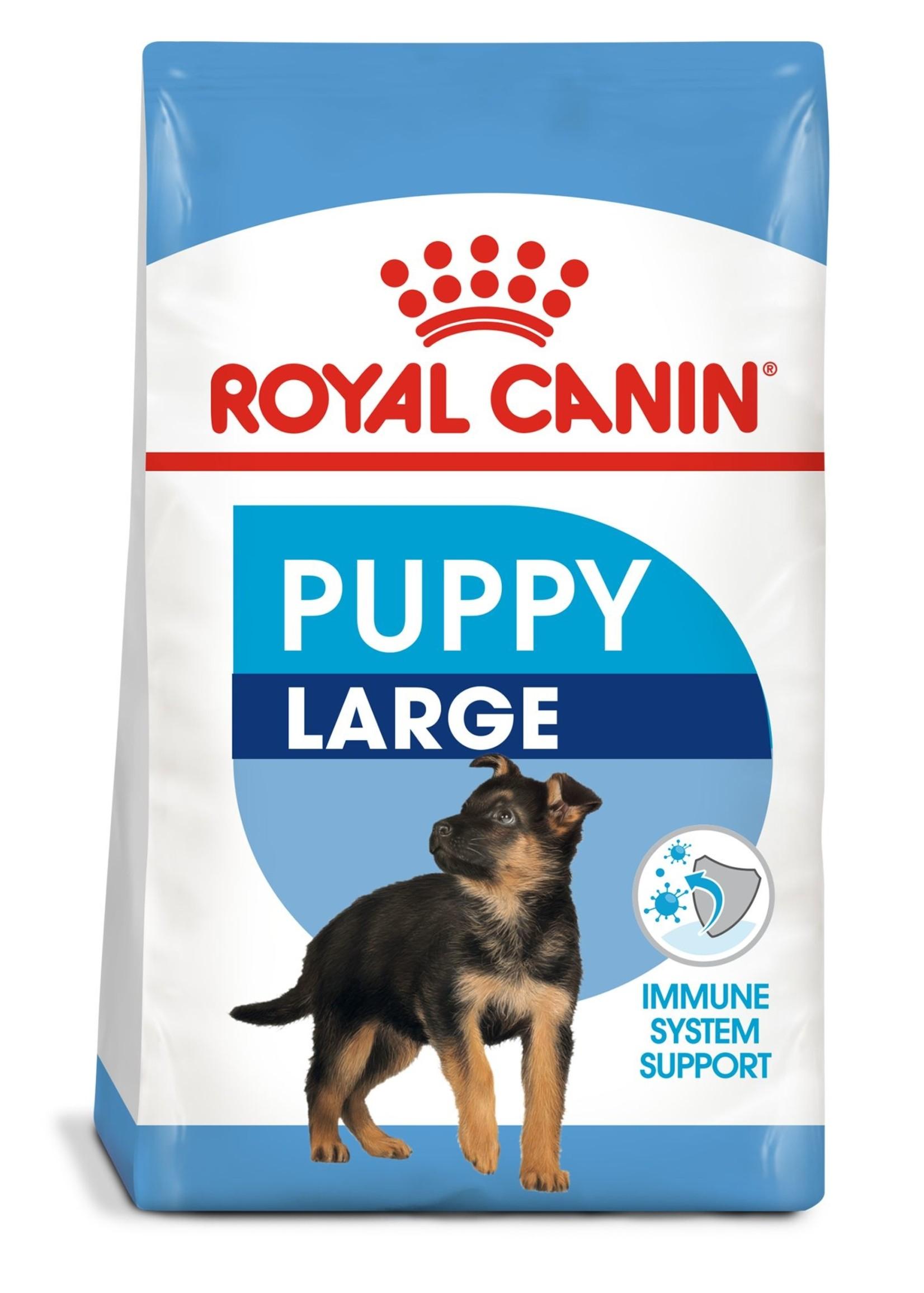 Royal Canin Royal Canin Dog Large Puppy 6lb