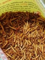Mill Creek Dried Mealworms  100g