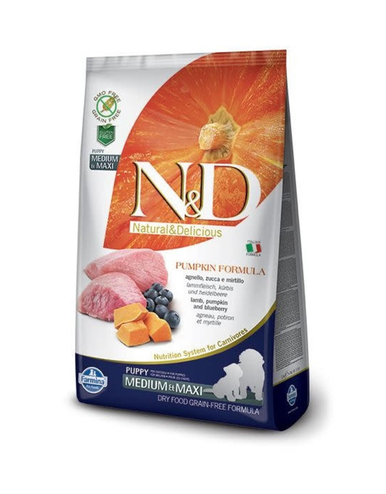 N&D Dog Lamb & Blueberry w/Pumpkin Puppy Med/Maxi 5.5LB