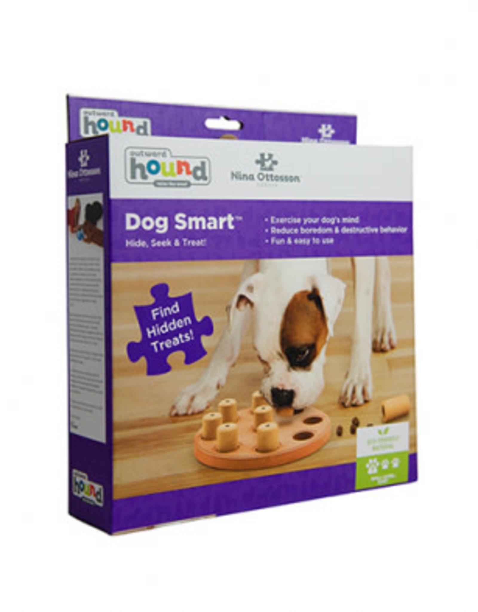 Outward Hound Dog Smart Composite Dog Puzzle Nina Ottosson
