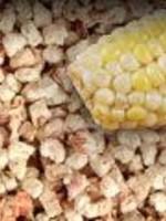 Pestell Pestell Corn Cob Bedding 40lb