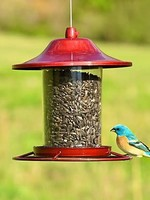 Perky Pet Red Sparkle Panorama Seed Feeder