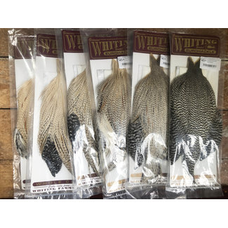 Whiting Eurohackle Whole Cape
