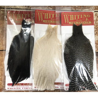 Whiting Hen Hackle, Hen Cape