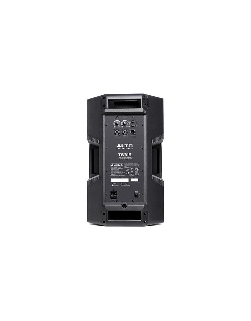 TS315 15 Inch 2 Way Powered Speaker