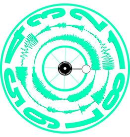 "VISUAL VINYL VOL. 2 - 12"" Green on White Scratch Record"