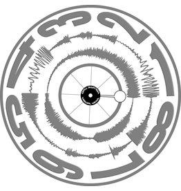 "VISUAL VINYL VOL. 2 - 12""  Grey on White Scratch Record"