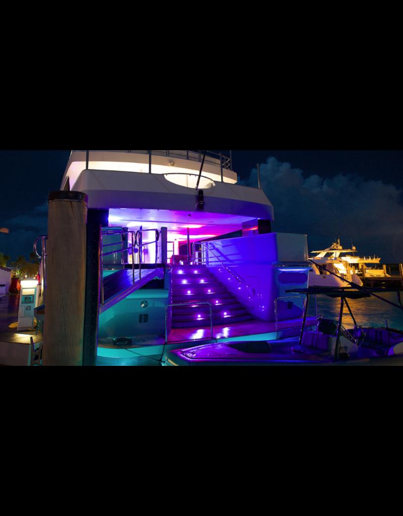 Chauvet DJ Chauvet DJ Freedom Par Hex-4 White Housing 10-watt RGBAW+UV LEDs Par Fixture