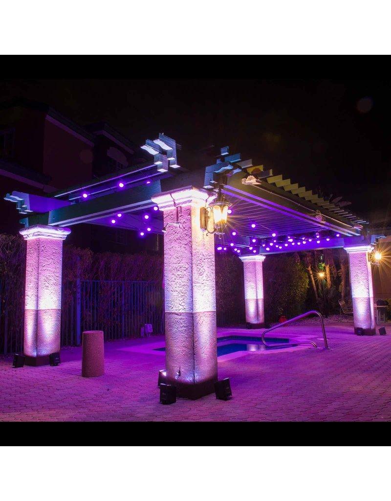 Chauvet DJ Chauvet DJ Festoon 2 RGB Décor String Lighting System IP54 Rated