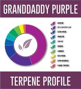 Pinnacle Granddaddy Purp 500mg