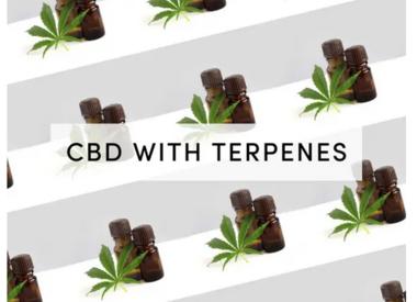 CBD With Terpenes