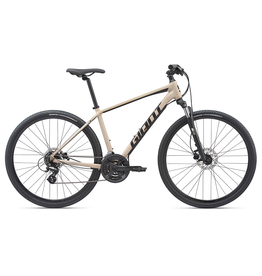 Giant 2020 Roam 4 Disc