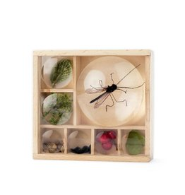 Kikkerland Designs Huckleberry Bug Box