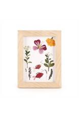 Kikkerland Designs Huckleberry Make Your Own Pressed Flower Frame