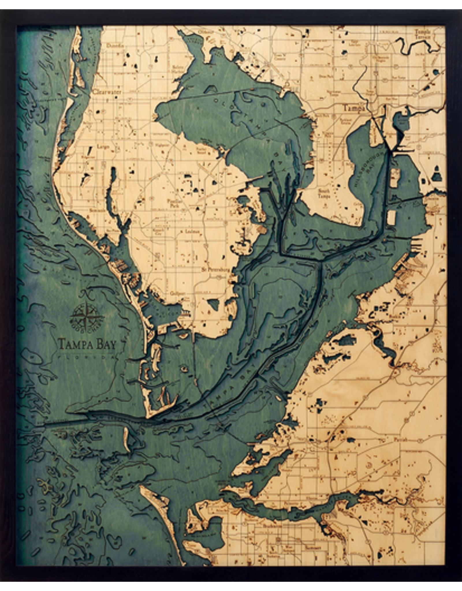 WoodCharts Tampa Bay/St. Petersburg, FL (Bathymetric 3-D Nautical WOODCHART)