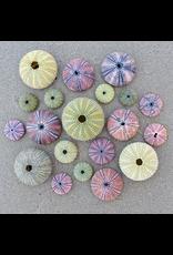 Zen Art & Design Sea Urchins (Teaser, 50 Pieces, ZEN Wooden Jigsaw Puzzle)