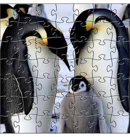 Zen Art & Design Emperor Penguins (Teaser, 50 Pieces, Artisanal Wooden Jigsaw Puzzle)