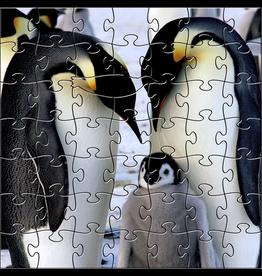 Zen Art & Design Emperor Penguins (Teaser, 50 Pieces, ZEN Wooden Jigsaw Puzzle)
