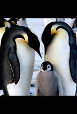 Zen Art & Design Emperor Penguins (Teaser, 50 Pieces, Artisanal Wooden Jigsaw Puzzle)