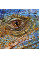 Zen Art & Design Blue Iguana (Teaser, 50 Pieces, Artisanal Wooden Jigsaw Puzzle)