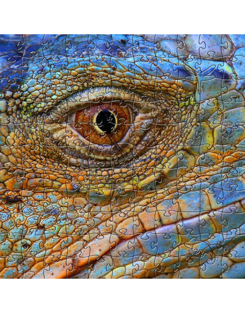 Zen Art & Design Blue Iguana (Teaser, 50 Pieces, Artisanal Wooden Jigsaw Puzzle)