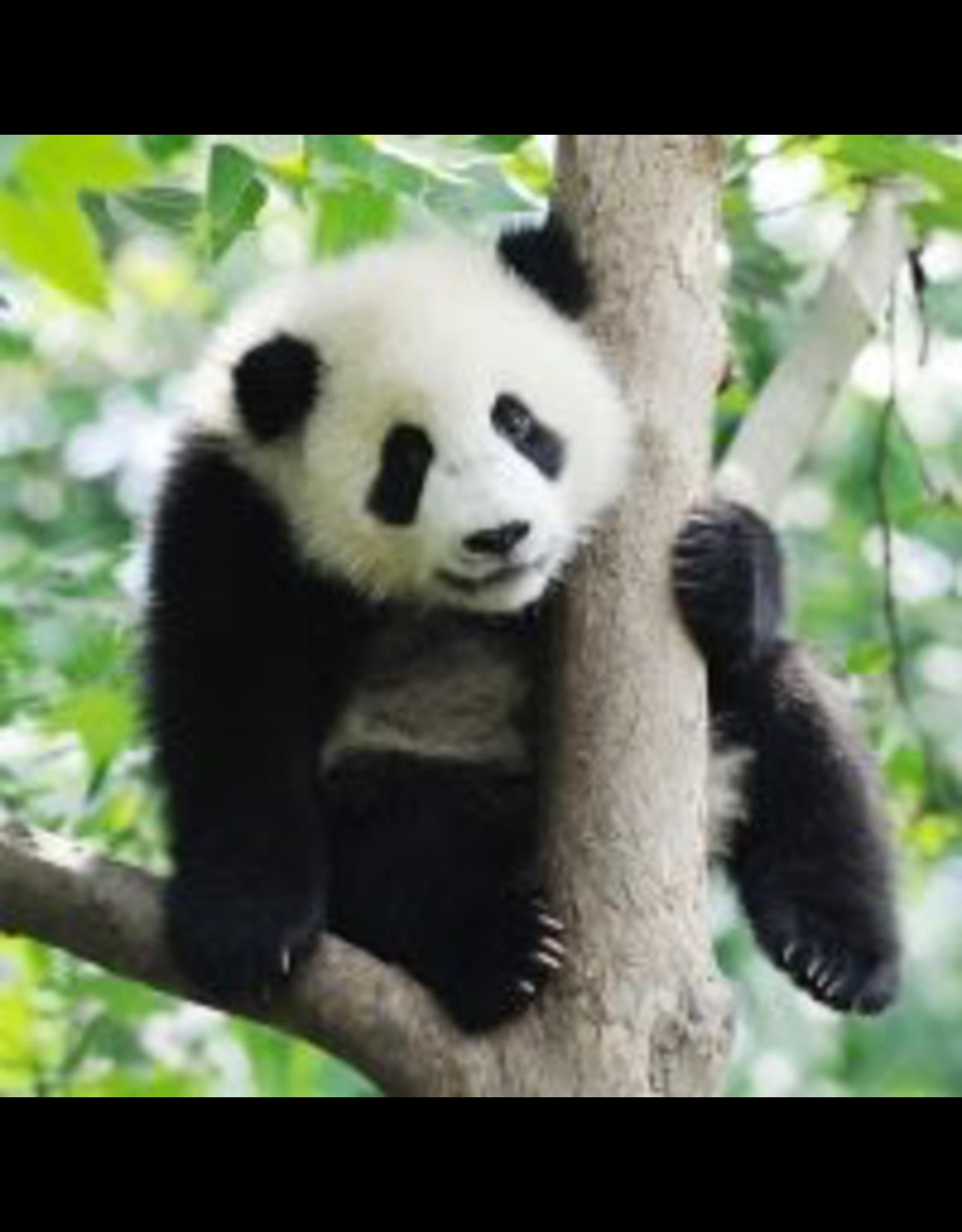 Zen Art & Design Panda (Sm, 126 Pieces, Artisanal Wooden Jigsaw Puzzle)