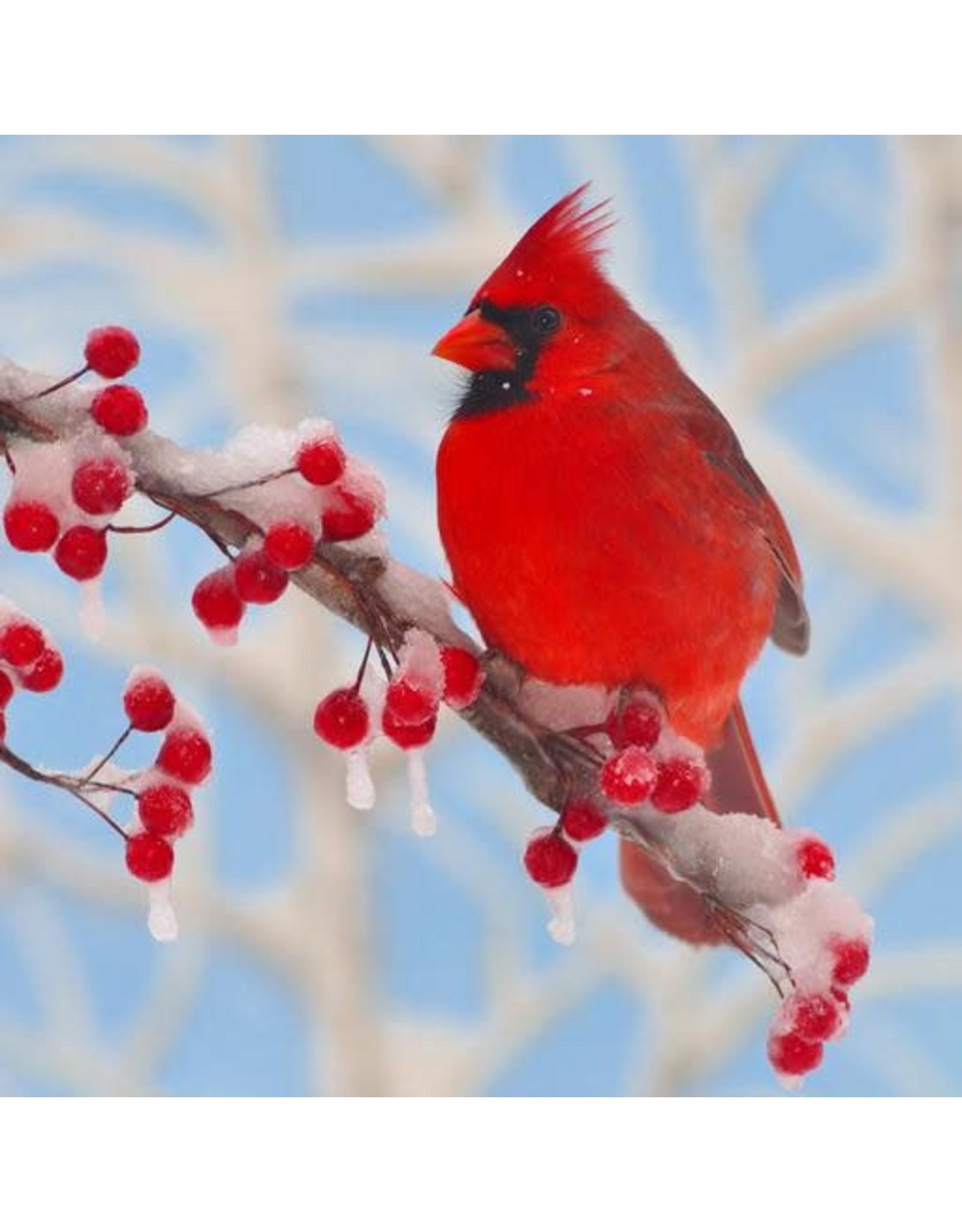 Zen Art & Design Winter Cardinal (Sm, 126 Pieces, ZEN Wooden Jigsaw Puzzle)