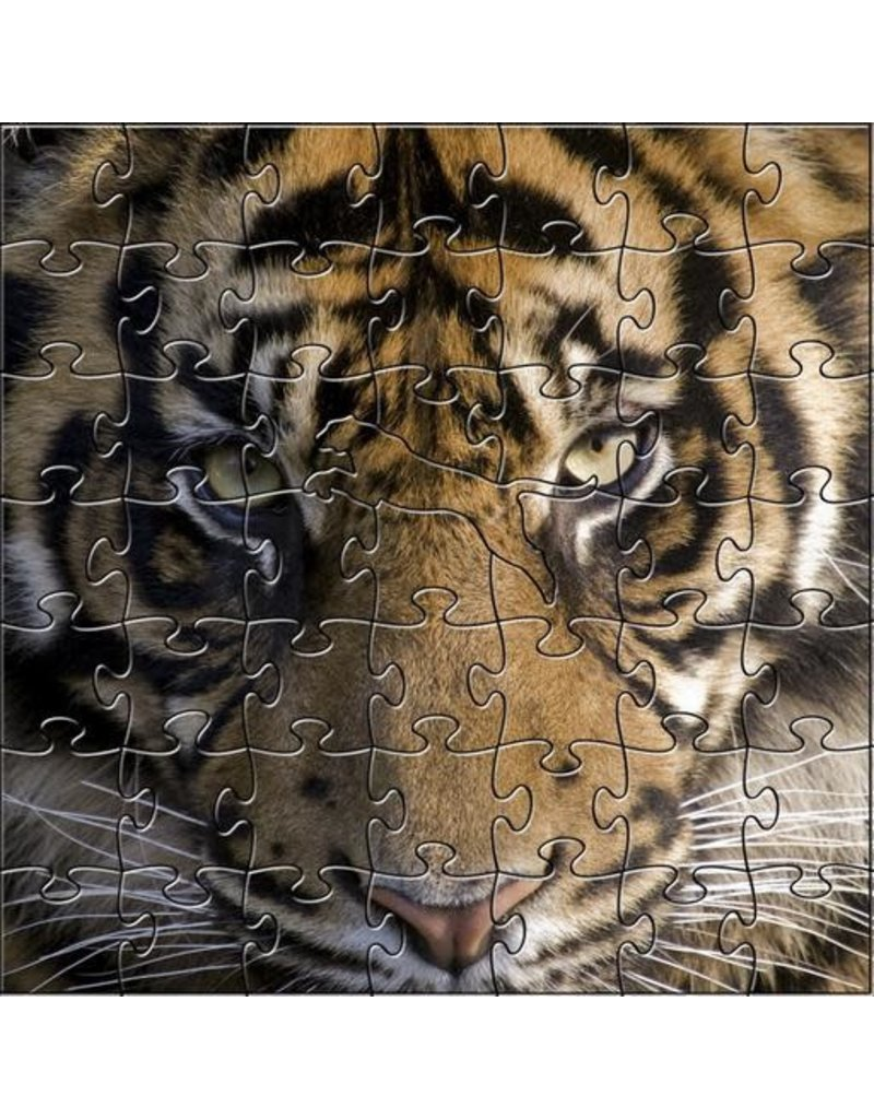 Zen Art & Design Amur Tiger (Teaser, 50 Pieces, Artisanal Wooden Jigsaw Puzzle)