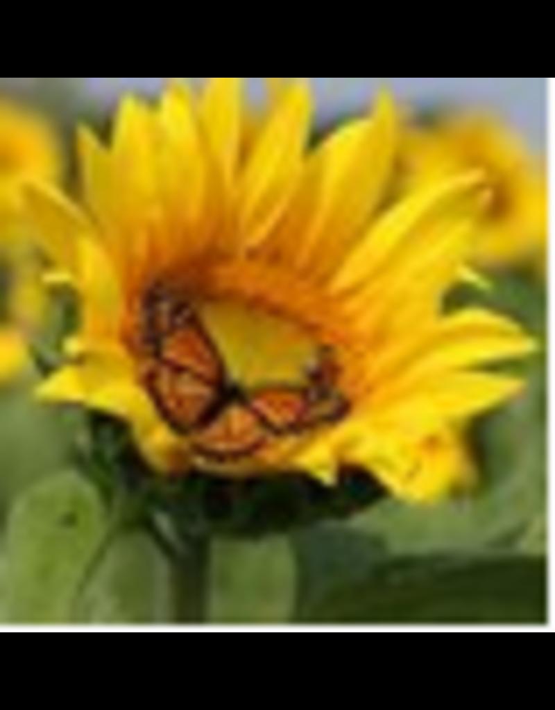 Zen Art & Design Sunflower (Sm, 126 Pieces, Artisanal Wooden Jigsaw Puzzle)